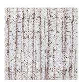 """Birch Trees Scrapbook Paper - 12"""" x 12"""""""
