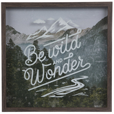 Be Wild & Wonder Framed Wood Wall Decor