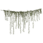 Green Spanish Moss Garland