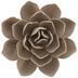 Beige Flower Decor