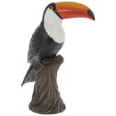 Toucan On Tree Stump