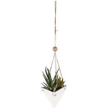 Succulents in Hanging Triangle Planter
