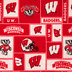 Wisconsin Block Collegiate Fleece Fabric