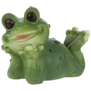 Wide-Eyed Laying Frog