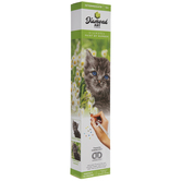 Kitten Diamond Art Intermediate Kit