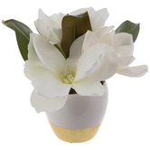 Gold & White Magnolia Arrangement