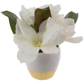 Gold & White Magnolia Arrangement