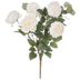 Cream White Cabbage Rose & Silver Dollar Eucalyptus Bush