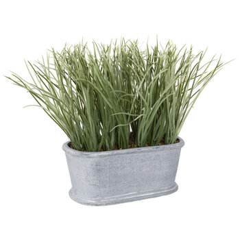 Airy Grass In Gray Pot