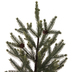 Pinecone Spruce Tree - 32