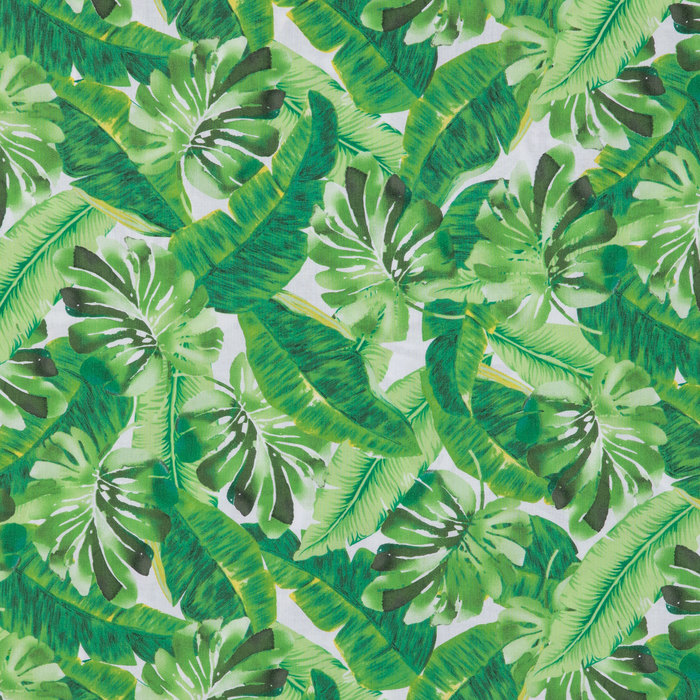 Tropical Leaves Apparel Fabric Hobby Lobby 1429448 Textures.com is a website that offers digital pictures of all sorts of materials. tropical leaves apparel fabric hobby lobby 1429448