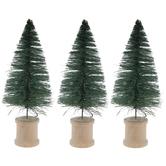 Green Sisal Trees
