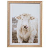 White Licking Cow Wood Wall Decor