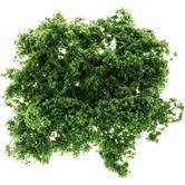 Light Green Coarse Foliage Fiber Clusters