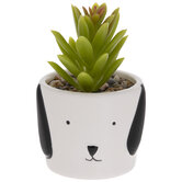 Succulent In Dog Flower Pot