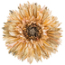 Cream Gerbera Daisy Pick With Glitter Tips