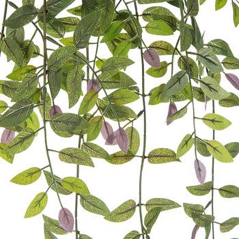 Green Smilax Bush