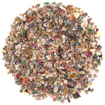 Tiny Dyed & Natural Shells