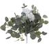 Gardenia & Eucalyptus Bouquet