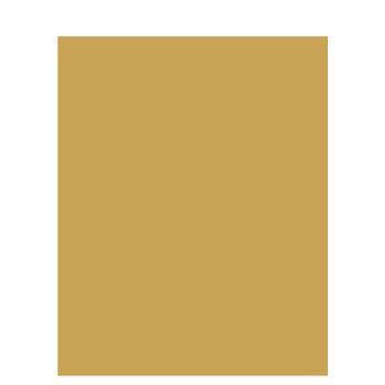 "Gold Metallic Matboard - 32"" x 40"""