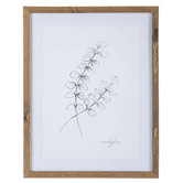 Sketched Branch Framed Wall Decor