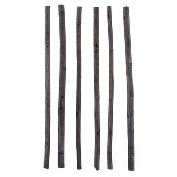 Soft Thin Vine Charcoal Sticks