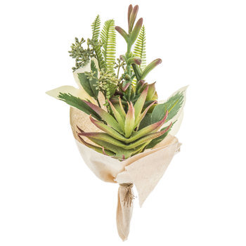 Green & Red Succulent Cloth Wrapped Bouquet