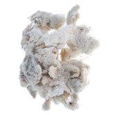 Natural Soft Reindeer Moss