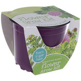 Sensitive Plant Starter Flower Grow Kit
