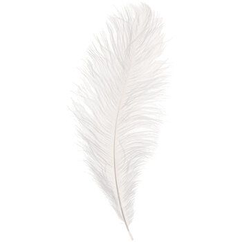"""White Ostrich Feather - 14"""" - 16"""""""