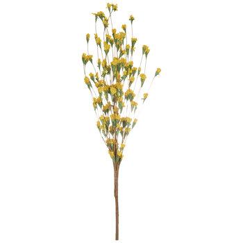 Yellow Wildflower Bud Bush