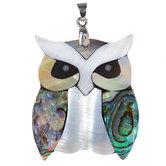 Owl Shell Pendant