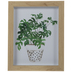 Potted Palm Leaves Framed Wall Decor