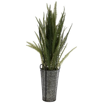 Mountain Fern In Slotted Metal Container
