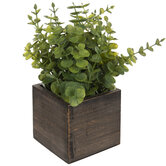 Plant In Square Wood Container