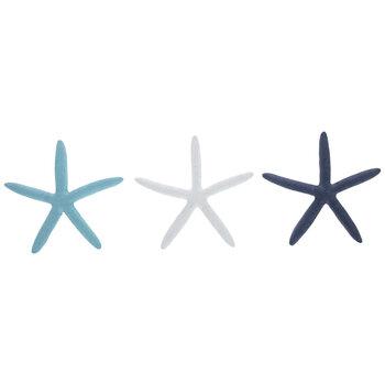 Blue & White Starfish