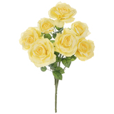 Light Yellow Rose Bush