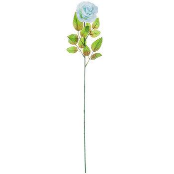 Curled Rose Stem