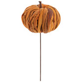 Dried Pumpkin Pick