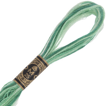 DMC Cotton Embroidery Floss - Green