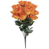 Tangerine Rose Bush