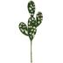 Prickly Pear Cactus Pick