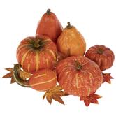 Pumpkins, Gourds & Leaves