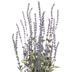 Flocked Lavender Bush