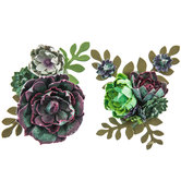 Succulent Grouping Embellishments