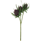 Thistle Flower Head Pick