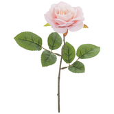Light Pink Rose Pick