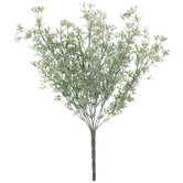 White Mini Seeding Bush