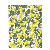 "Lemon Grove Scrapbook Paper - 8 1/2"" x 11"""