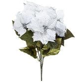 Metallic Poinsettia Bush